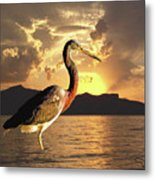 Tricolored Heron At Sunset Metal Print