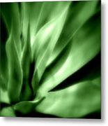 Tropical Plant Metal Print