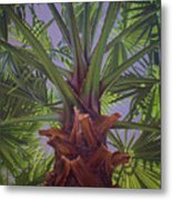 Tropical Shadows Metal Print