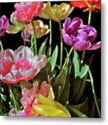 Tulip 8 Metal Print