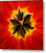 Tulip Explosion Kaleidoscope Metal Print