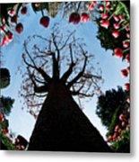 Tulip Wonderland L550 Metal Print