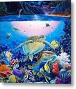 Turtle Bay Metal Print