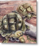 Turtle Friends Metal Print