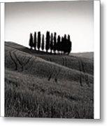 Tuscany Triptych Metal Print