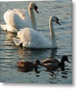 Two By Two Metal Print