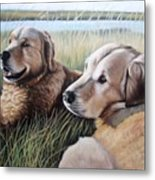 Two Golden Retriever Metal Print