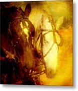 Two Horsepower Metal Print