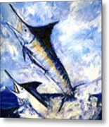 Two Marlin A Blue And A Striper Metal Print