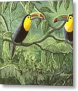 Two Toucans Metal Print
