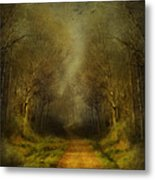 Unknown Footpath Metal Print by Svetlana Sewell