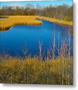 Upper Roxborough Reservoir Metal Print