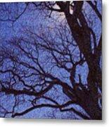 Van Gogh Tree Metal Print
