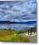 View From A Bench Metal Print