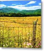 Virginia Fields Of Green Metal Print