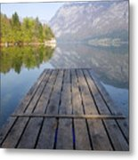 Visions Of Bohinj Metal Print