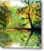 Waccamaw River Sc Metal Print
