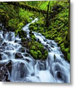 Wahkeena Metal Print by Chad Dutson
