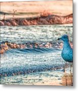 Walking On Sunshine Metal Print