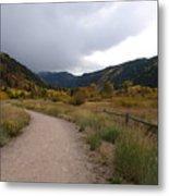 Walking Trail In Colorado Metal Print