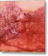 Wall As Mountain Landscape Metal Print