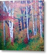 Washington Forest Metal Print