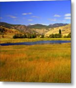 Washington Landscape Metal Print