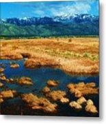 Washoe Valley Metal Print