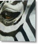 Watchful Eye  Metal Print