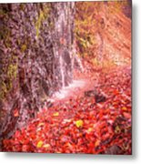 Water Dripping On The Rock Wall Metal Print