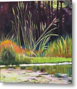 Water Garden Landscape Metal Print by Melody Cleary