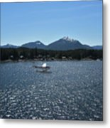 Water Landing Metal Print