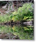 Water Like A Mirror Metal Print
