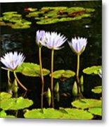 Water Lilies 1 Metal Print