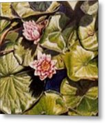Water Lilies On The Ringdijk Metal Print