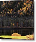 Water Reflections In Autumn Metal Print