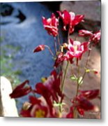 Waterfall And Columbine II - Pride Of Colorado Metal Print