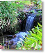 Waterfall In The Fern Garden Metal Print