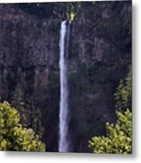 Waterfall In Washington Metal Print