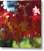 Wearing Red For Fall Metal Print