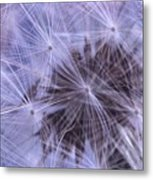 Web Of Lies Metal Print