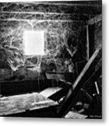 Webbed Window Metal Print