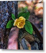 Western Yellow Rose Viii Metal Print