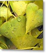 Wet Yellow Leaves 2 Wc  Metal Print