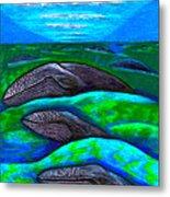 Whales In Glacier Bay  Alaska Metal Print by Al Goldfarb