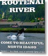 Whales Of The Kootenai River Metal Print