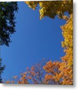 What A Day - Photograph Metal Print