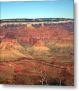 Whata View Metal Print