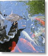 Whats For Dinner Metal Print