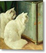 White Cats Watching Goldfish Metal Print by Arthur Heyer